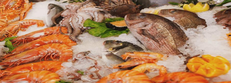 Seafood[1]